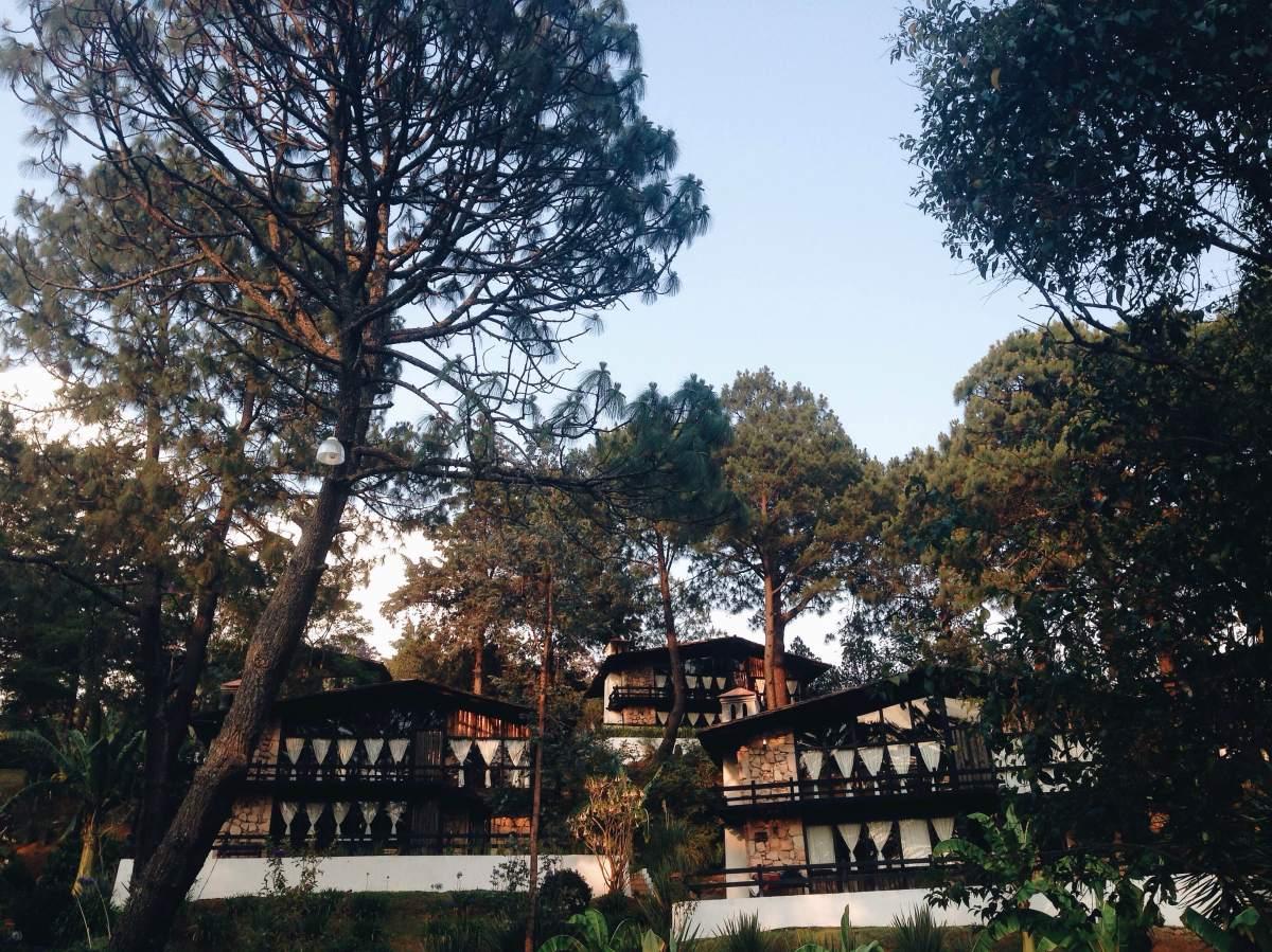 Mazamitla, Monteverde y Green Forest Tours: ¡mezcla perfecta de aventura y relax!