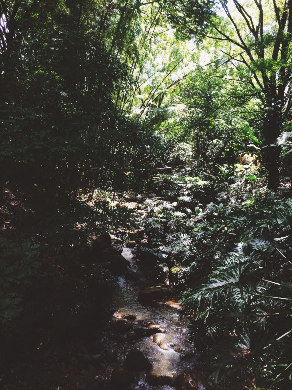 Processed with VSCO with f3 preset