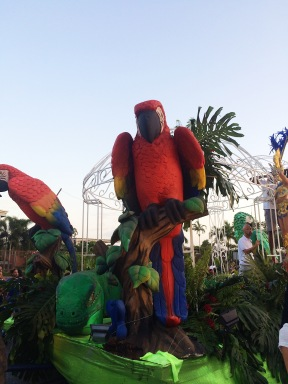Guacamaya/Parrot