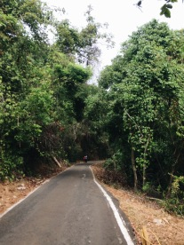 El camino que lleva a la cima/The paved road leading to the top
