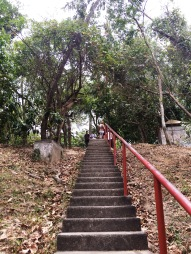Escaleras para llegar hasta arriba/Stairs to get to the top