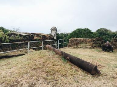 Cañón en Fuerte San Lorenzo/Canyon at the Fort