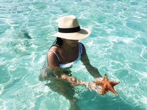 Trata las estrellas de mar con respeto y cariño/Treat the starfish with care and respect