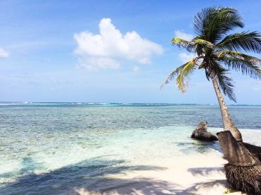 Playas vírgenes/Untouched beaches